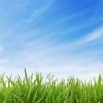 Víte, jak se postarat o trávník?