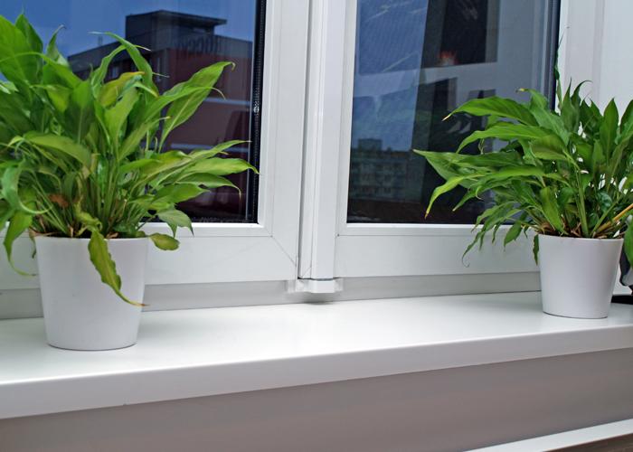 Možné způsoby zabezpečení plastových oken