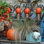 Dýňové dekorace pro vaši zahradu